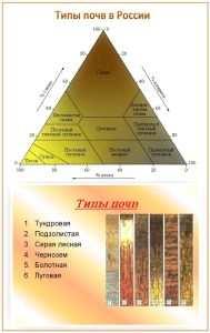 Фундамент на различных типах почв
